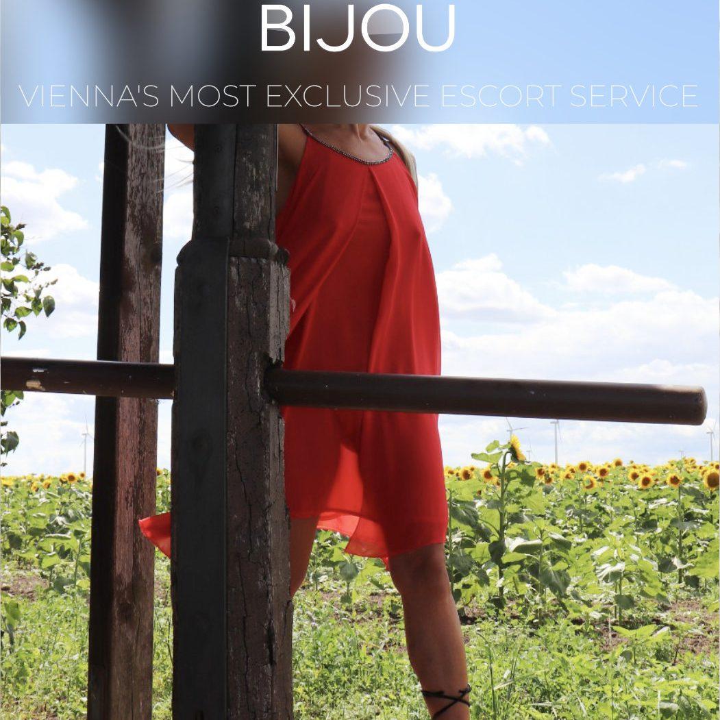 Bijou 11 x